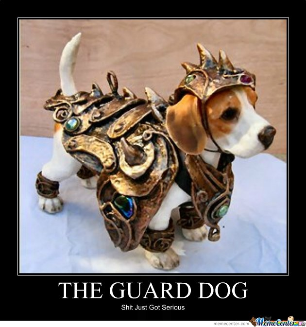Funny Guard Dog Pictures