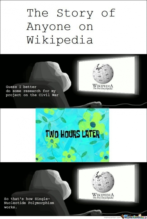 The story of anyone on Wikipedia