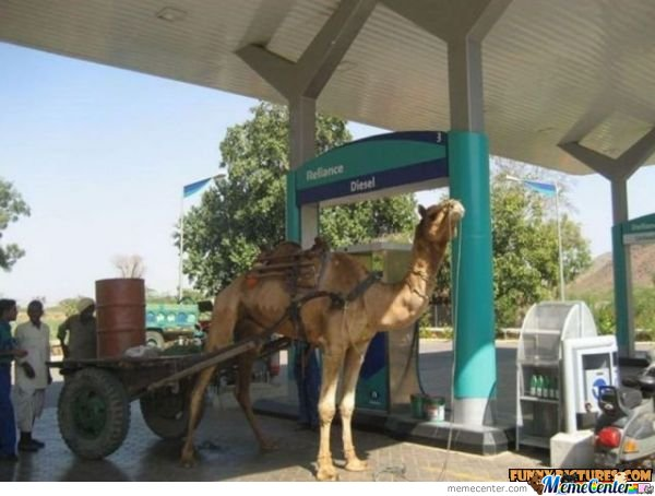 Unleaded or Diesel?