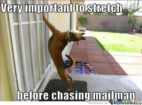 Very Important to stretch before chasing mailman
