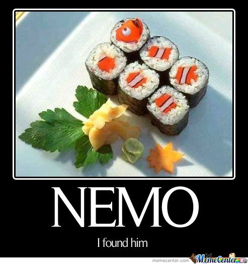 Where is Nemo?