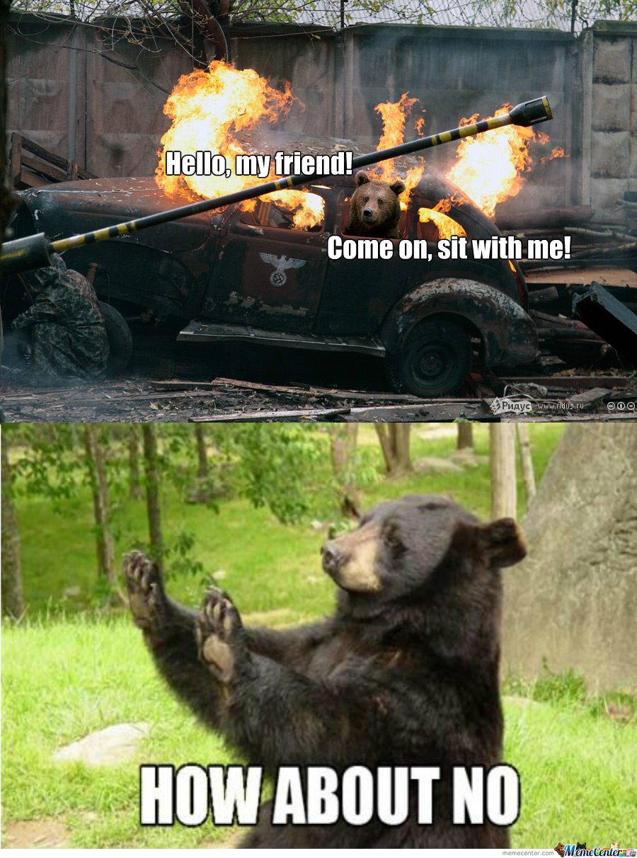 A Bear In A Car On Fire.