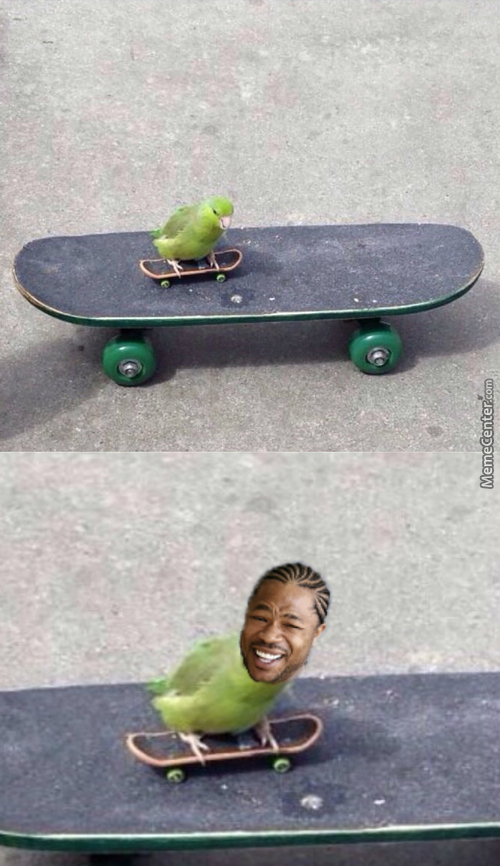 A Bird On A Skateboard On A Skateboard. Your Argument Is Invalid.