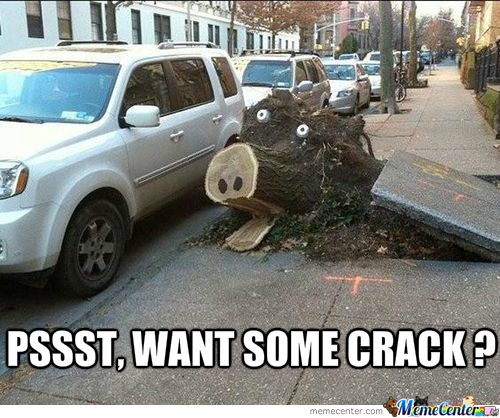 A Car On Crack, Now That's Something I Want To See
