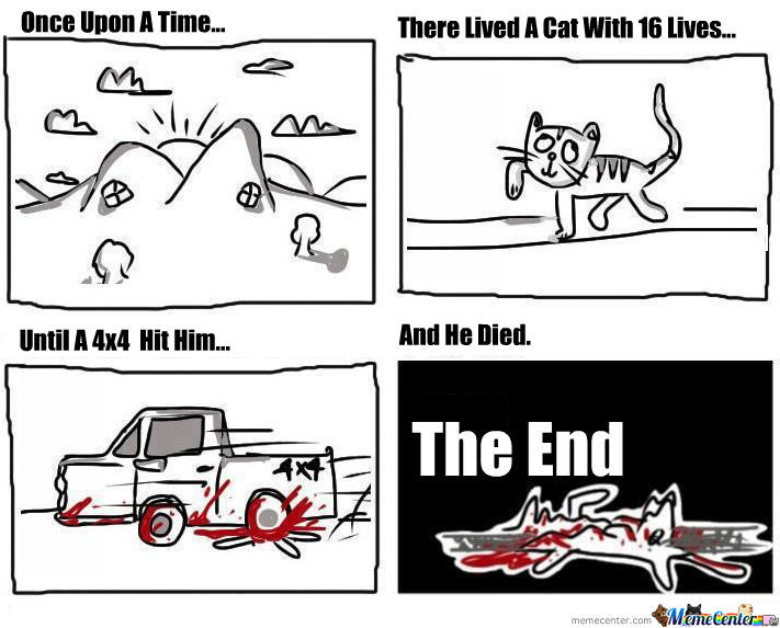 A Cat Story...