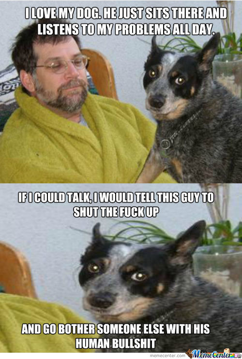 A Dog's Confession