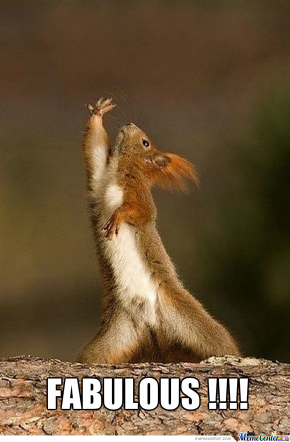 A Fabulous Squirrel