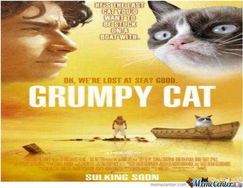 A Grumpy Cat Movie?well,i Am In!!!!!!!!