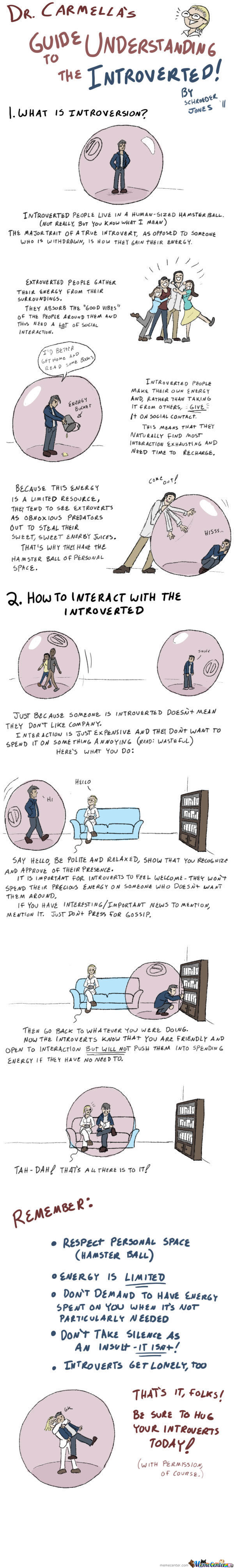 A Memecenter's Guide To The Introverted (Disclaimer)