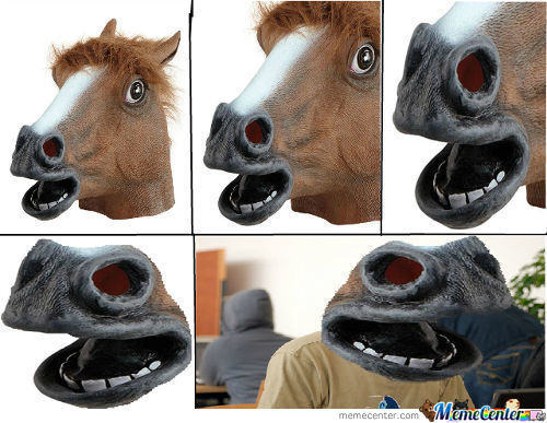 A New Perspective On The Horse Mask