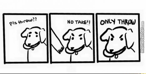 A Perfect Example Of Dog Logic..