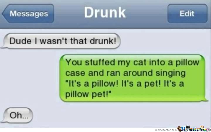 A Pillow Pet