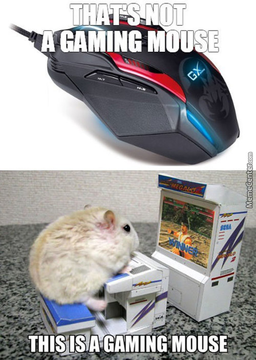 A Real Gaming Mouse
