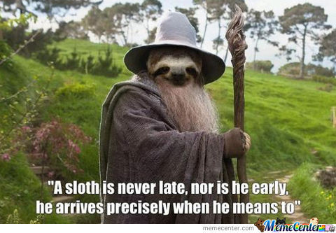 A Sloth Is Never Late...