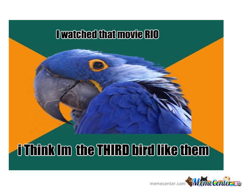 A Third Race Bird Like Rioo ..