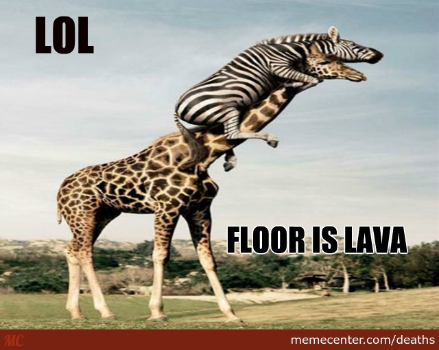 Funny Zebra Meme : A zebra on giraffe your argument is invalid by deaths