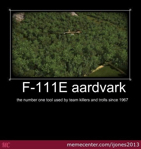 Aardvark Just Being An...