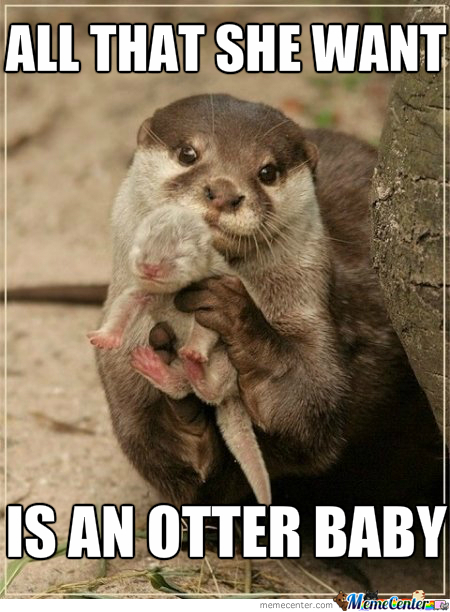 Ace Of Otters