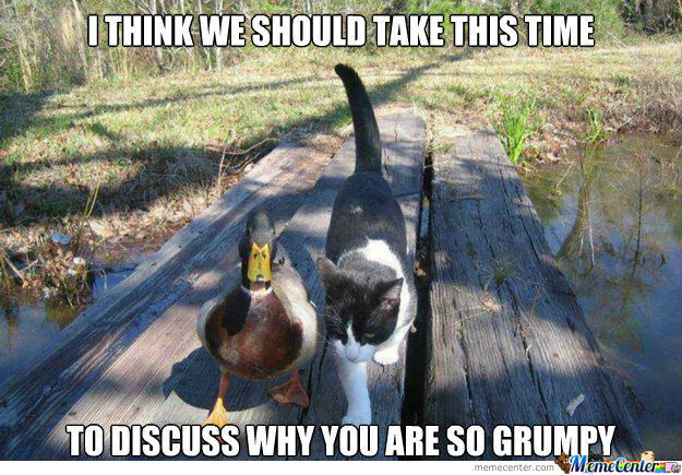 Actual Advice Mallard Meets Grumpy Cat