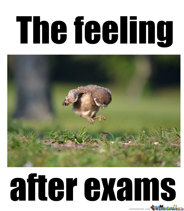 Funny Meme On Exams : After exams by lillyray meme center