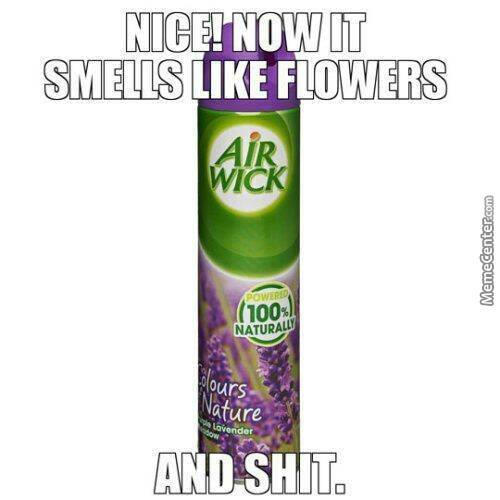 Air Freshening Products In A Nutshell