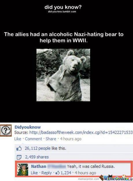 Alcoholic, Nazi-Huntig Bear