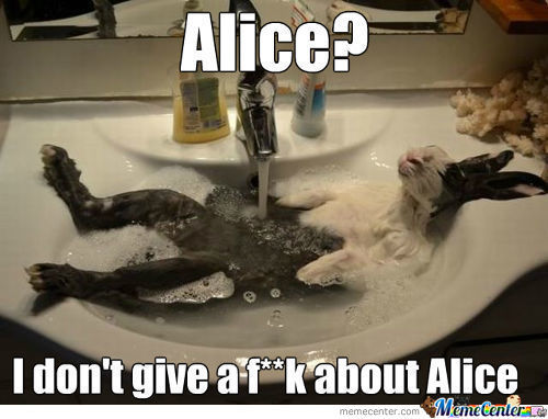 Alice, Who The F**k Is Alice?