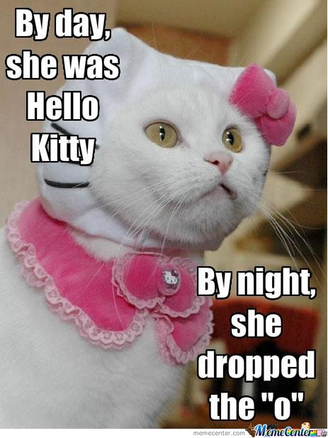 All Fear The Hell Kitty!