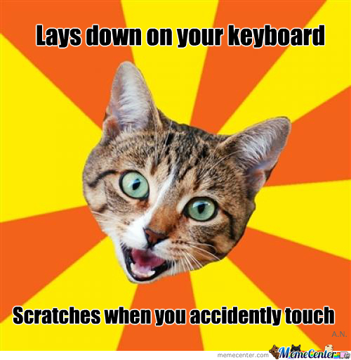 Always On Your Keyboard!