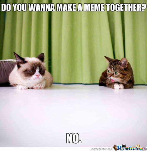 'lil Bub And Grumpy Cat