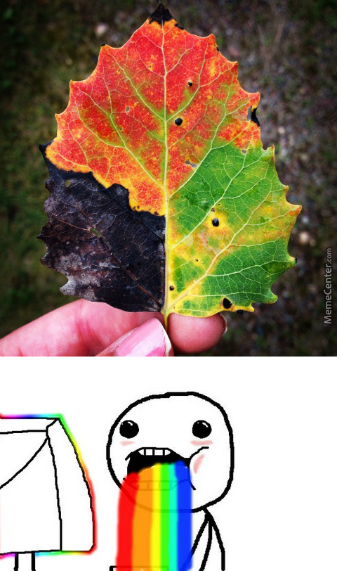 """ F*ck This Leaf In Particular ""- Mother Nature"