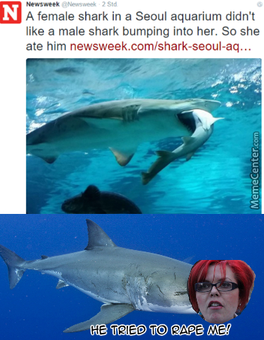 """we Need Feminism For Sharks."""