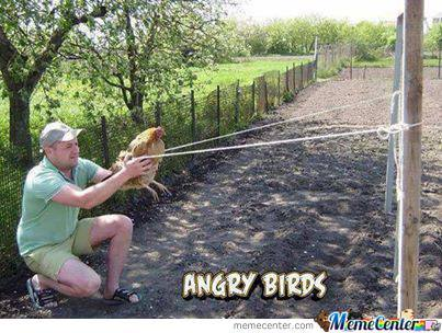 Angry Birds Irl