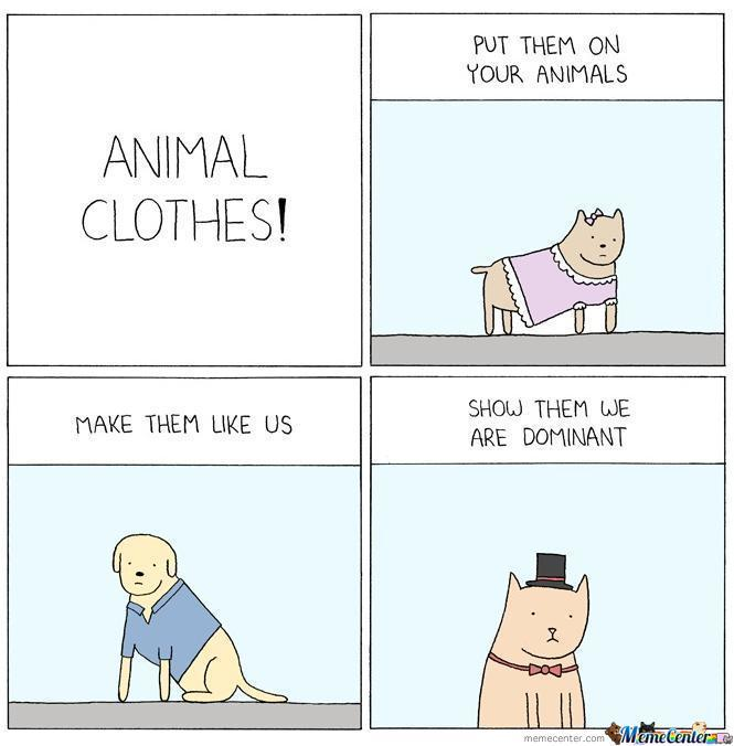 Animal Clothes