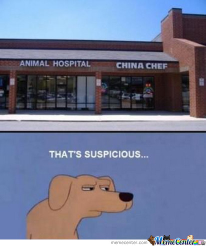 Animal Hospital, China Chef... Mmm That's Suspicious..!!