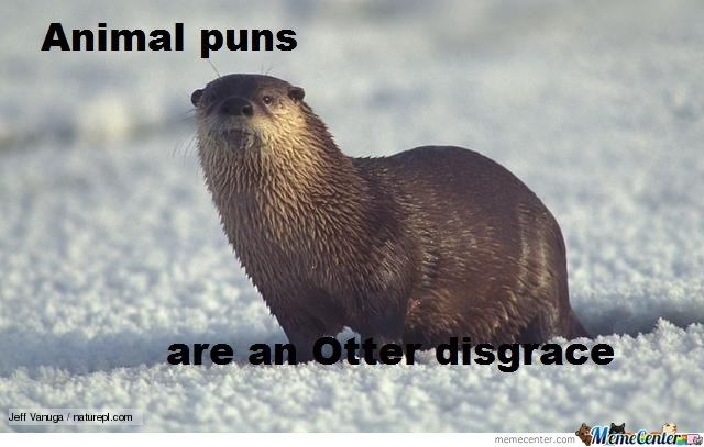 animal puns by project hamster   meme center