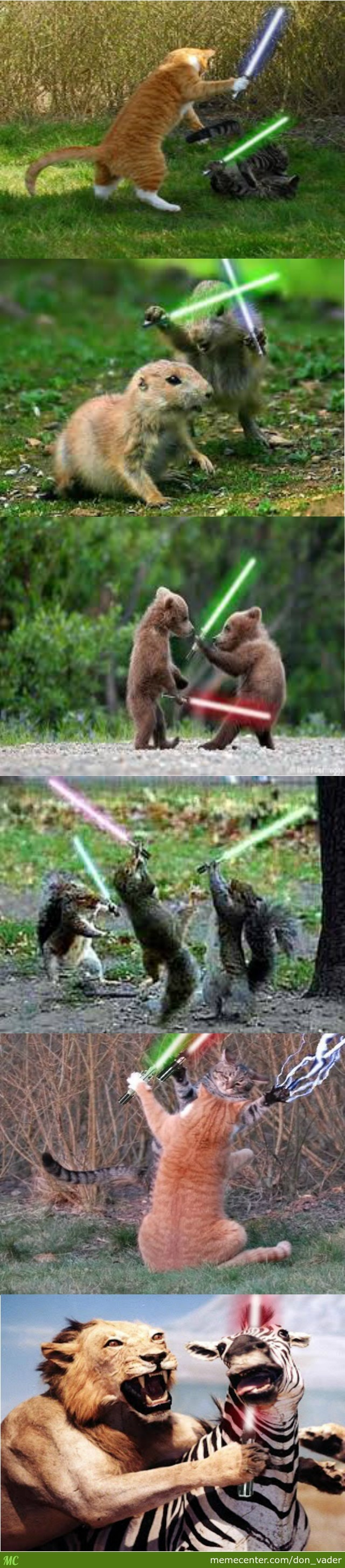 Animals With Lightsabers, What More Do You Want?