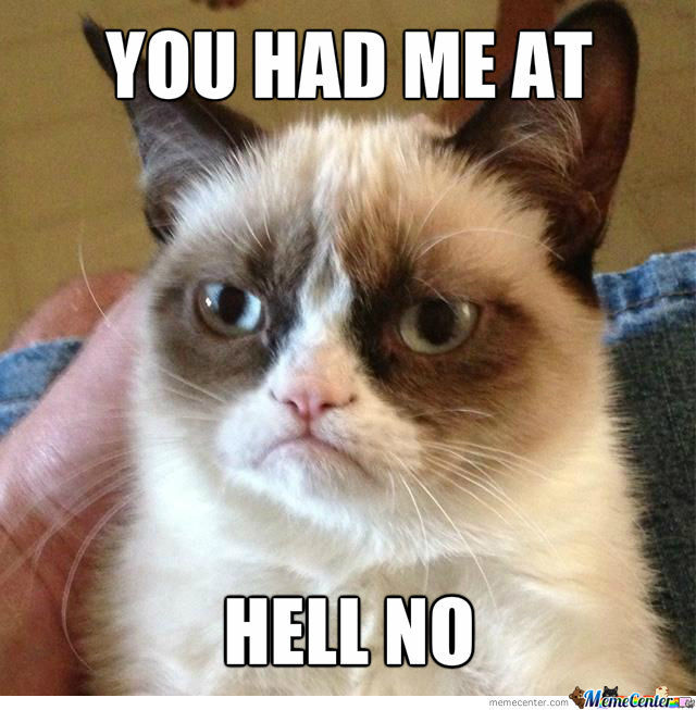 Anti-Conversational Grumpy Cat