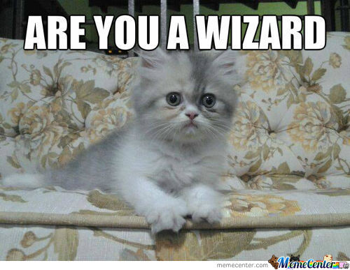 Are You A Wizard Cat