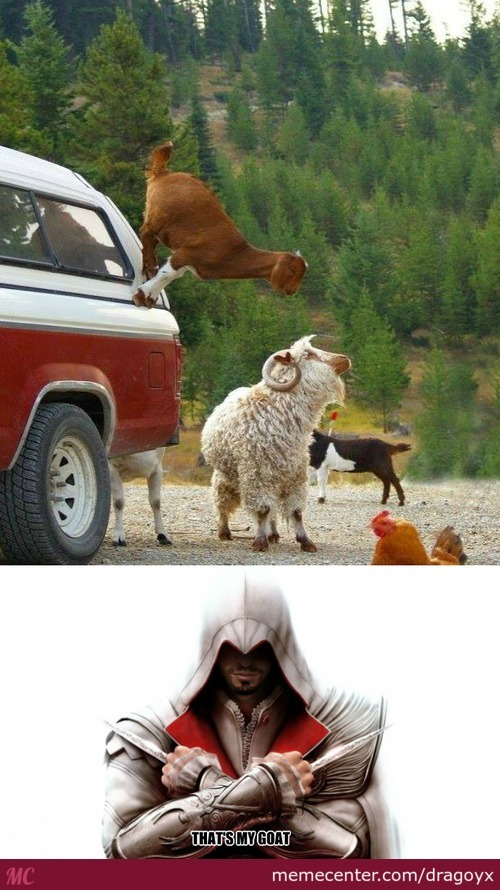 Assassin Goat