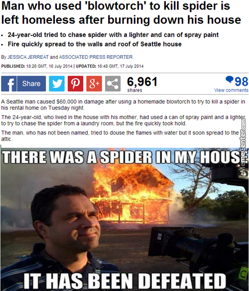 At Least The Spider Is Dead