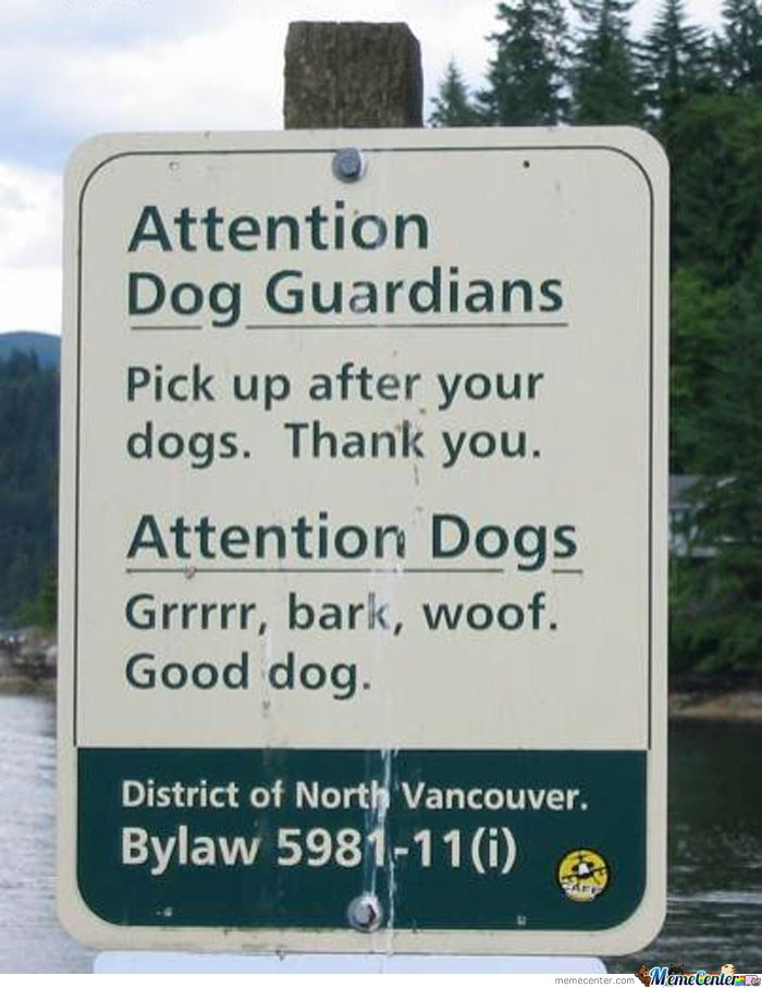 Attention Dog Guardians And Dogs