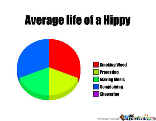 Average Life Of A Hippy