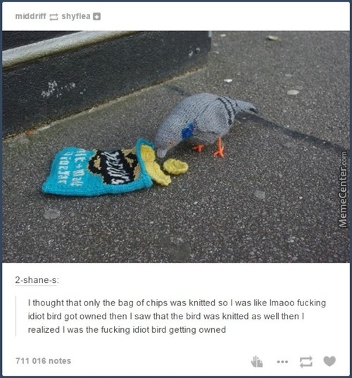 Awesome Tumblr 1170