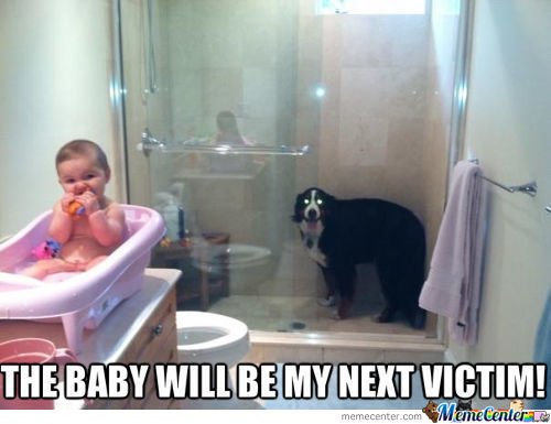 baby shower memes best collection of funny baby shower pictures