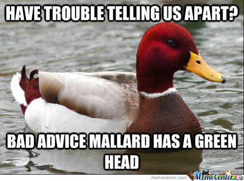 Bad Advice Mallard