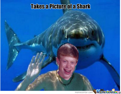 Bad Luck Brian And Shark
