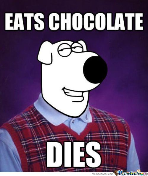 Bad Luck Brian Griffin