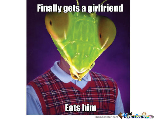 Bad Luck Mantis