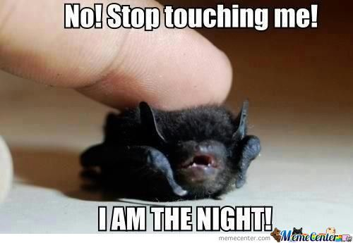 Batman, In The Early Years